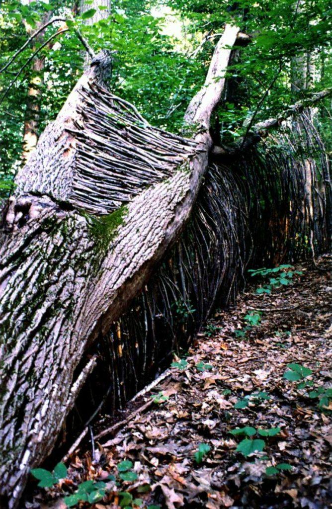Shelter - 2006